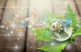 Regenerative Business & New Economy