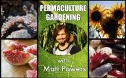 permaculture gardening matt powers