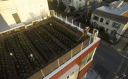 Roof Farm Shot