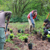 Ecological Restoration Earth Repair And Permaculture Setting Up A Working Group