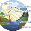 450 484231742 Water Cycle Process