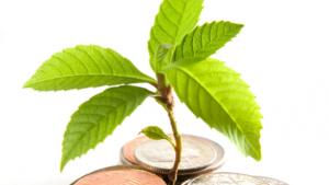 Regenerative Funding: Raising Resources for the Movement