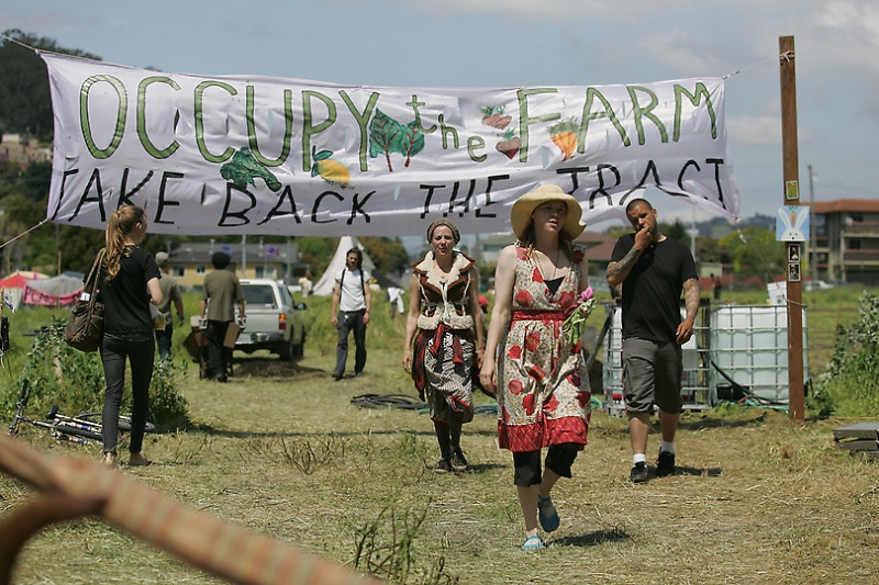 Occupy The Farm Still