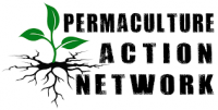 PC Action Network E1467851212144