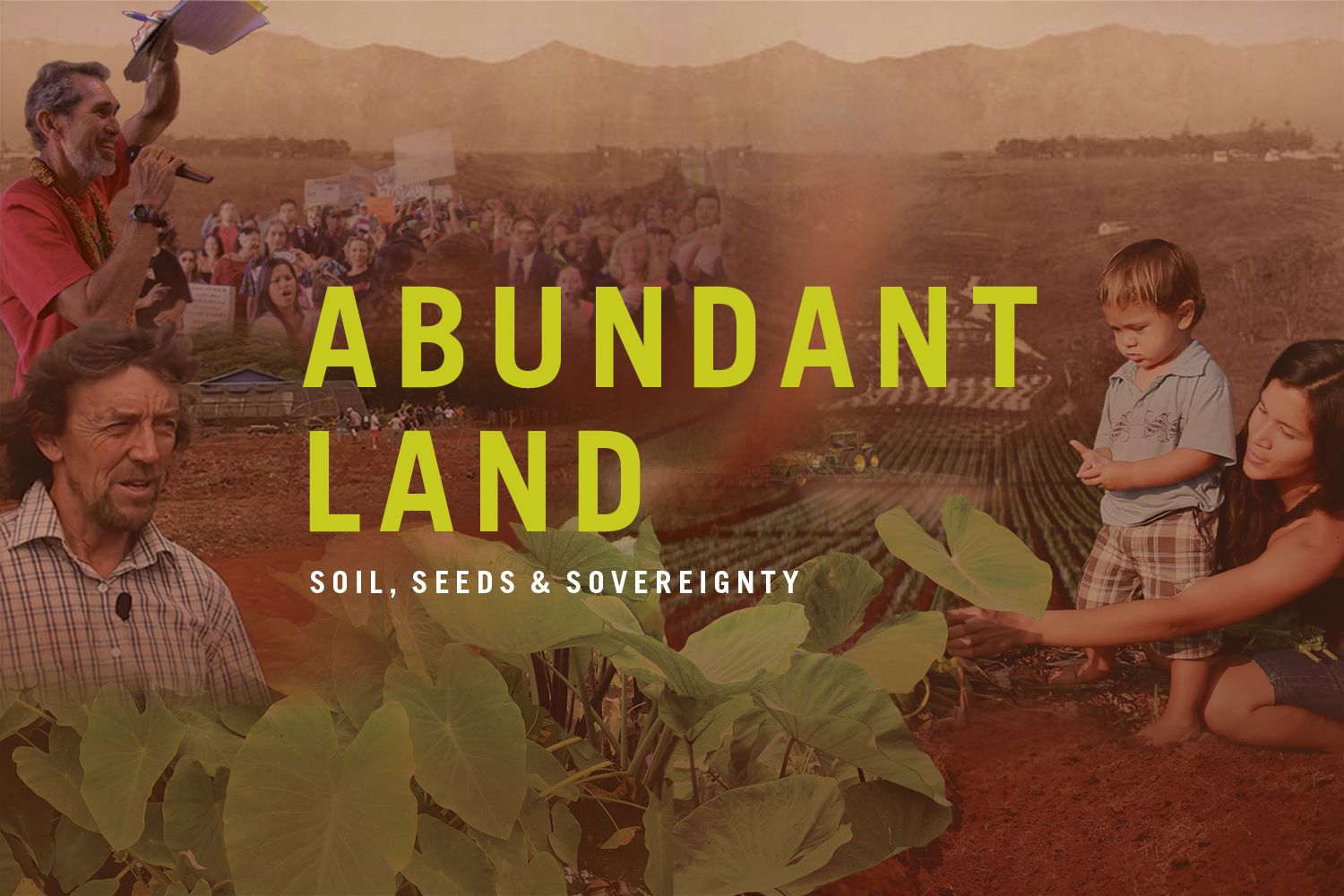 Film Screening: Abundant Land: Soil, Seeds and Sovereignty - Followed by Q&A with Director
