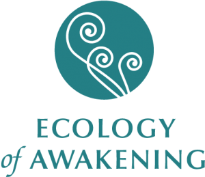 Ecology Of Awakening