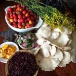 Access The Abundance of Edible Plant Diversity: From Backyard to Global Resources