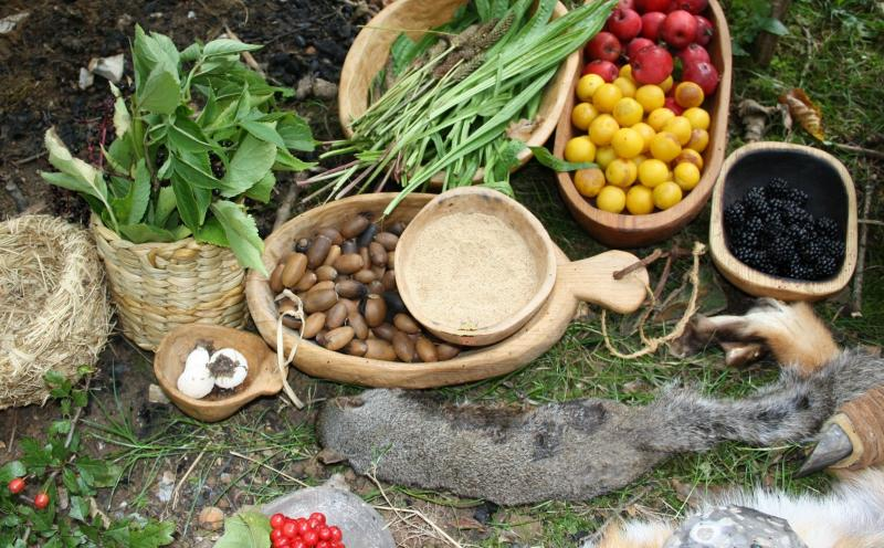 Wild Food  Foraging Autumn Feast