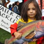 Bring Back the Salmon! A Call to Action from Chief Caleen Sisk of the Winnemem Wintu Tribe