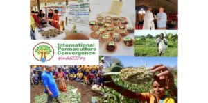 Diversity of Participants, Diversity of Ideas, Diversity of Solutions from Around the Globe: Come Learn About the International Permaculture Convergences