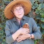 Elaine Pendergrast