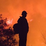 Raging Wildfires in California: Destruction Through Mismanagement