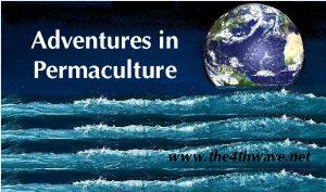 Adventures in Permaculture