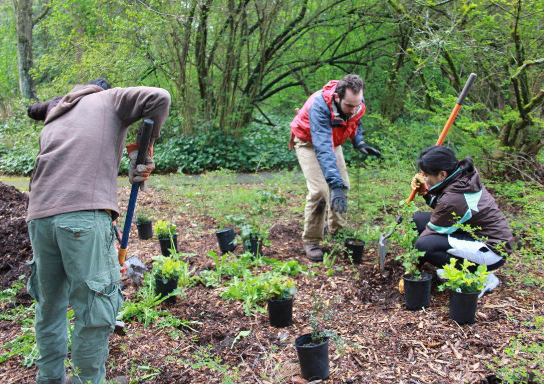 Ecological Restoration, Earth Repair and Permaculture: Setting up a working group