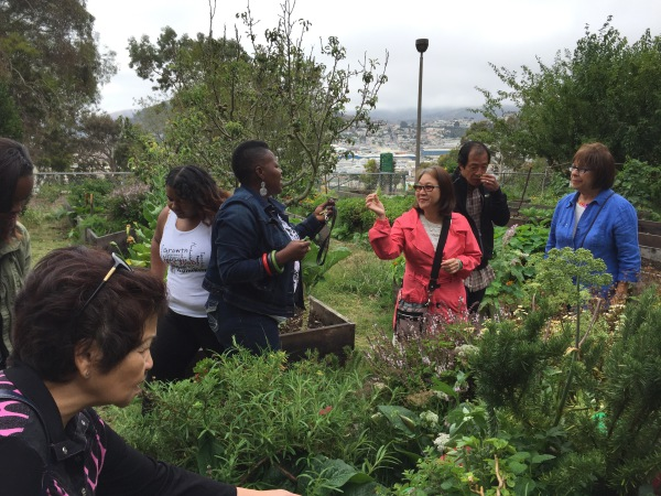 Working at the Edges: Exploring Our Personal and Cultural Eco-Systems