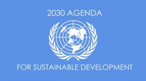 Read more about the article Organize for the 2030 Agenda for Sustainable Development