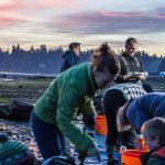 Ocean Farming & Restoration